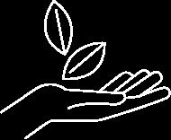 Une illustration d'une main avec des feuilles.