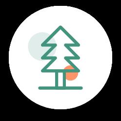 Illustration d'un arbre.