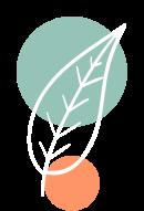 Illustration d'une feuille pour représenter : Une démarche RSE pionnière.